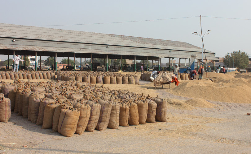 RBI Lifts Lending Freeze on Punjab's Procurement Agencies, say Dailies –  Smart Indian Agriculture